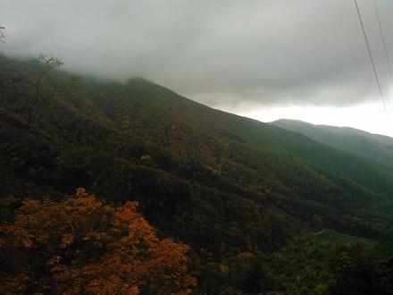 20141026_misaka06.jpg