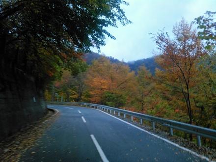 20141026_misaka07.jpg