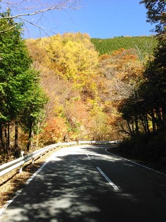 20141103_misaka3.jpg