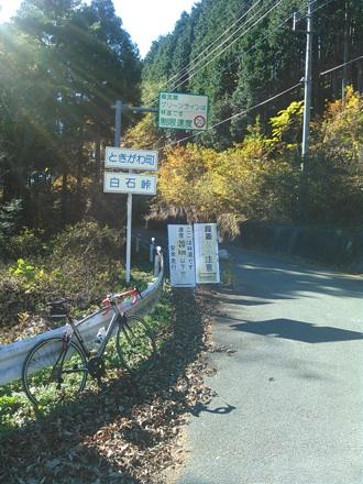 20141115_siraisi2.jpg
