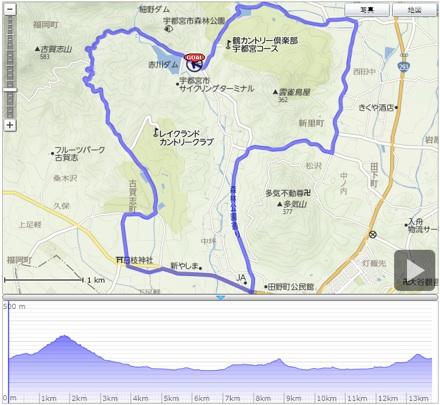 japancup_root.jpg