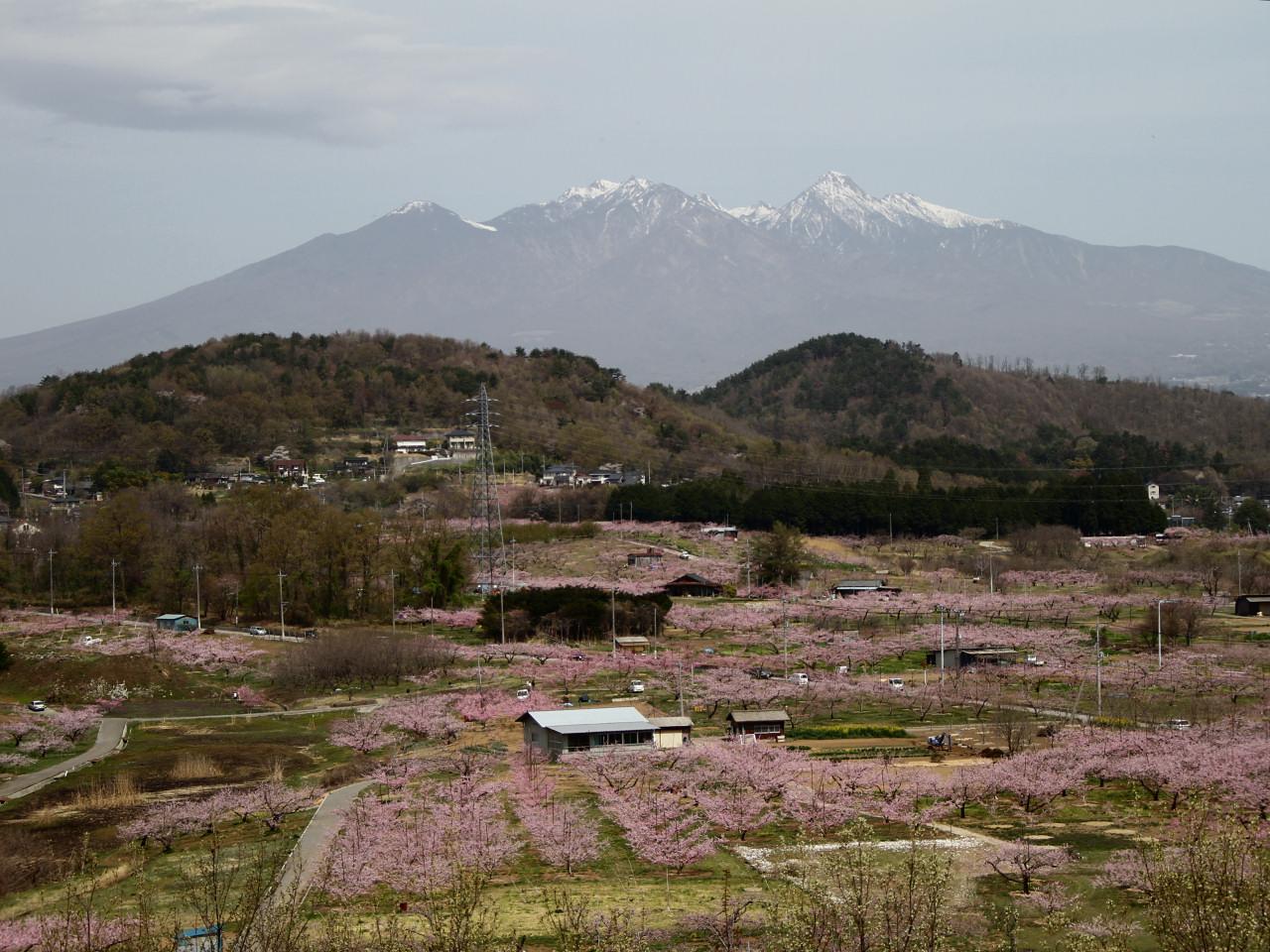 八ヶ岳from新府-IMG_2688