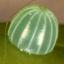 64-コムラサキ卵