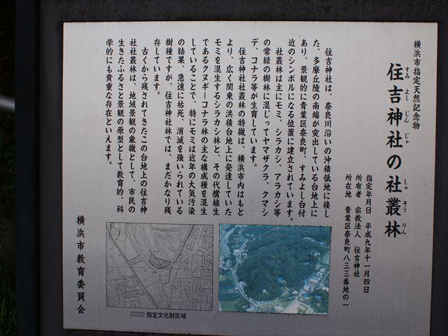 DSC06115_R.jpg
