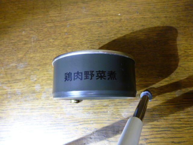 P1010430_R.jpg