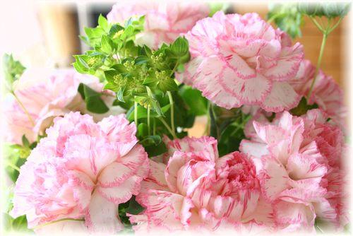 2010年 誕生日のお花♪