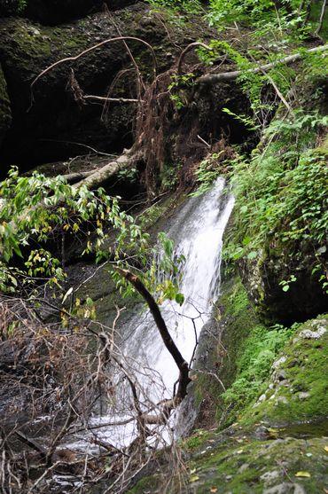 白蓮の滝1