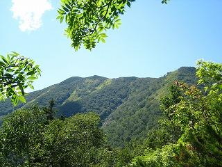 芽室岳頂上(H=1000Mより)