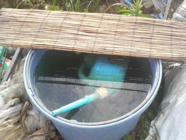 子供たちが水をいっぱいにしてくれました^^