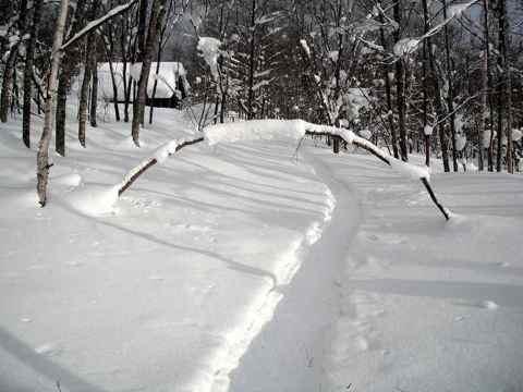雪のアーチ