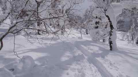 白樺山ラッセル
