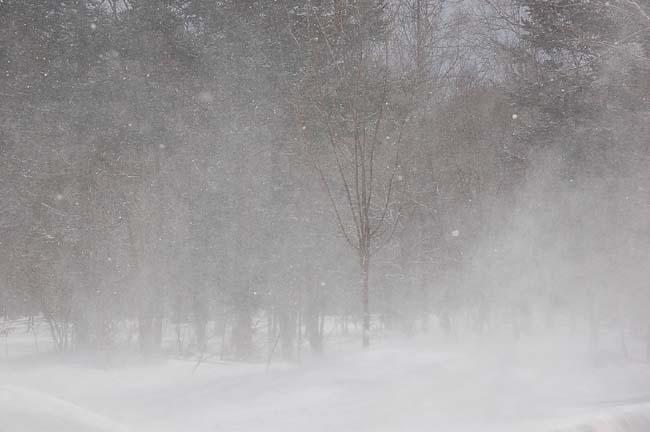 3.13地吹雪 (9)