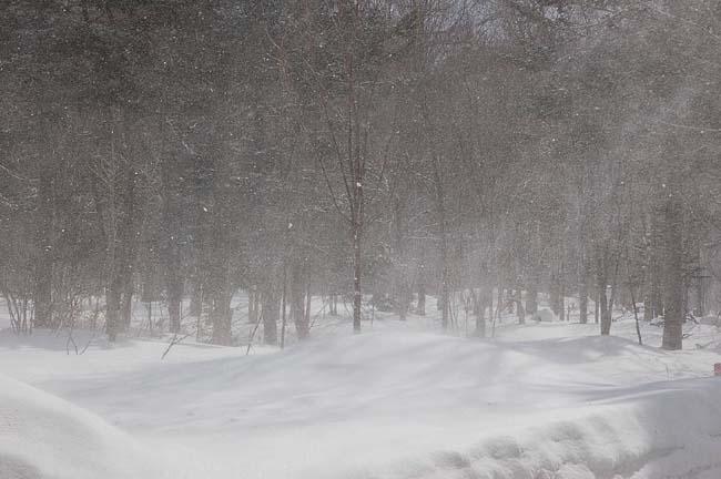 3.13地吹雪 (11)