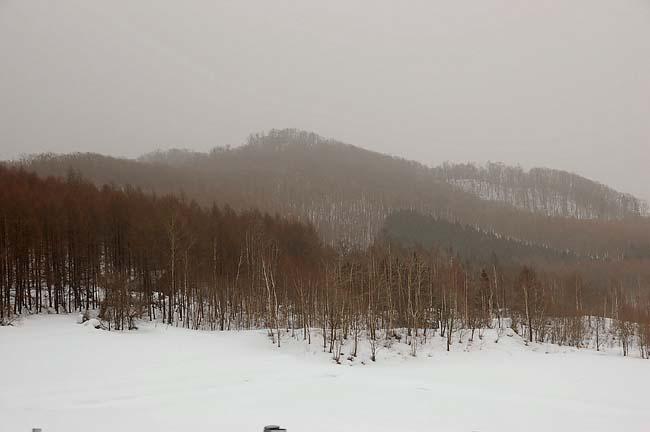 3.21大嵐 (15)