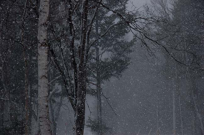 4.14ずっと吹雪き (6)