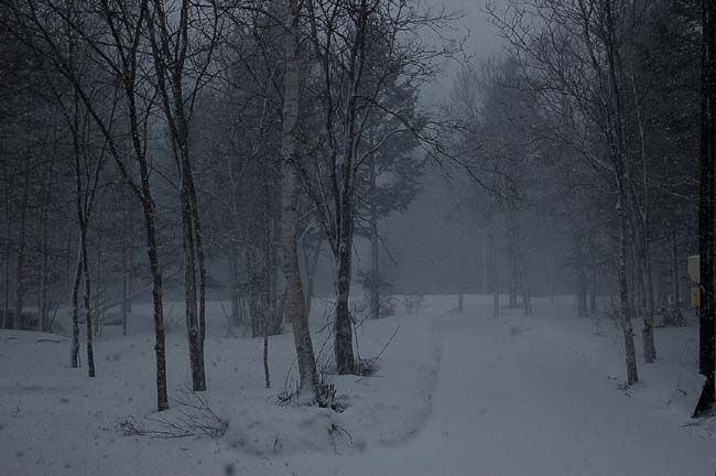 4.14ずっと吹雪き (8)