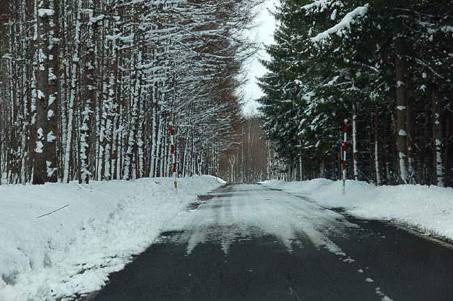 4.1520センチ積雪 (35)