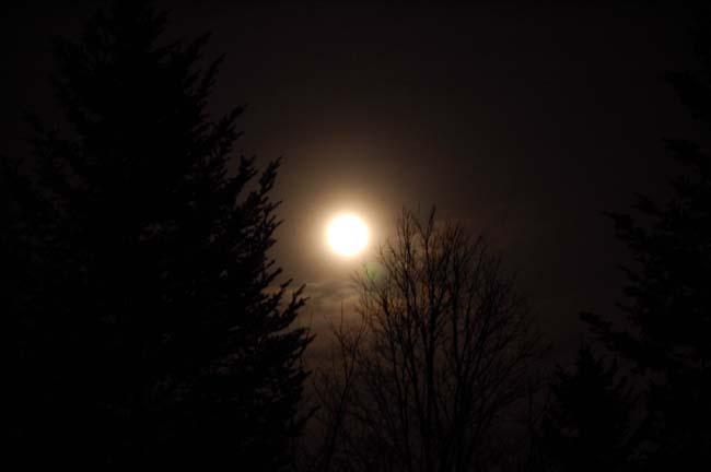 満月 (1)