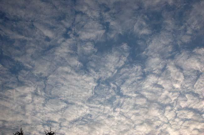 5.5夕方の雲