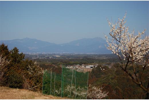 市房山と江代岳