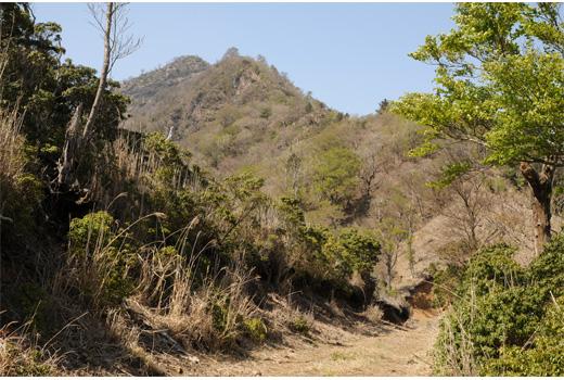 林道合流点からの石堂山