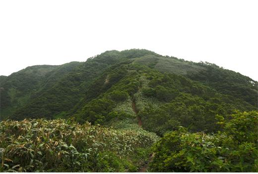 シャクナゲ平付近からの荒島岳