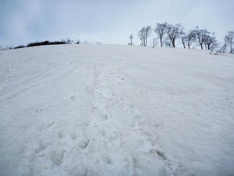 キリン峠下の急斜面