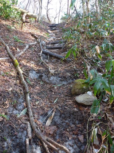 尾根に上る階段