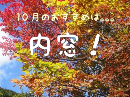 top_201410010904215ae.jpg