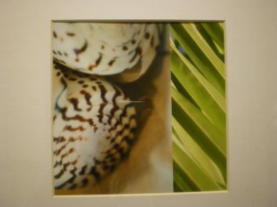 ハワイ2012.7ホテル室内絵画