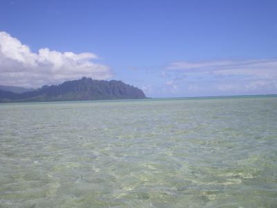 ハワイ2012.7サンドバー②