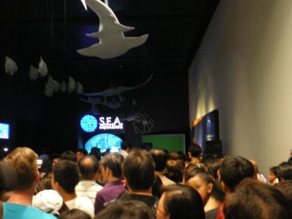 シンガポール2013.3アクアリウム入場行列2