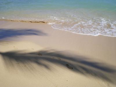 ハワイ2012.7ワイキキビーチ波打ちぎわ