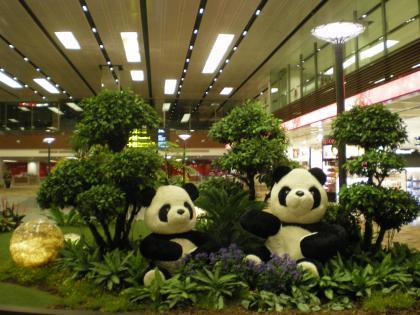 シンガポール2013.3チャンギ空港パンダ植栽