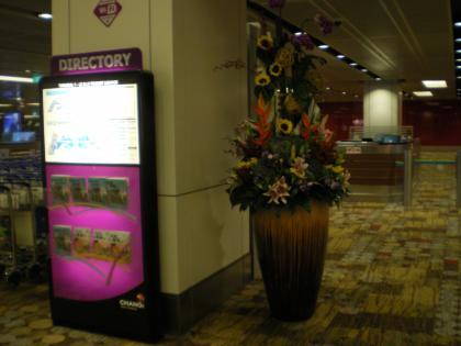 シンガポール2013.3チャンギ空港植栽3