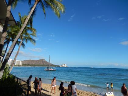 ハワイ2013.7ショアバードからワイキキ