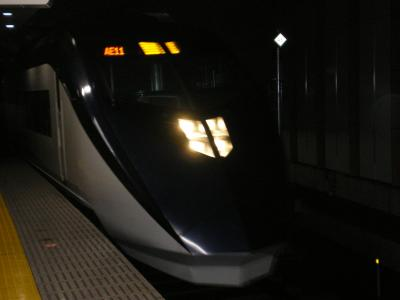 台湾2012.8帰路スカイライナー
