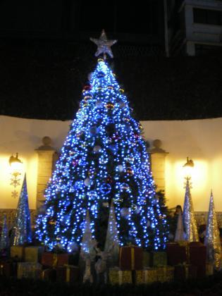 香港2012.12民生総署内クリスマスツリー