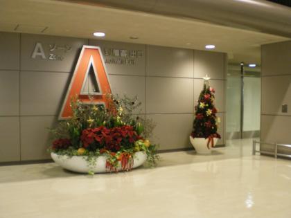 香港2012.12成田到着ロビー植栽