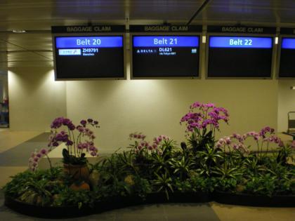 シンガポール2013.1チャンギ空港バゲージクレーム案内