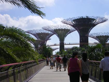 シンガポール2013.1ガーデンバイザベイ橋