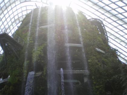 シンガポール2013.1クラウドフォレスト滝