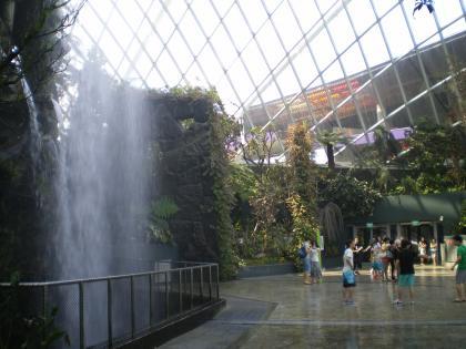 シンガポール2013.1クラウドフォレスト滝前
