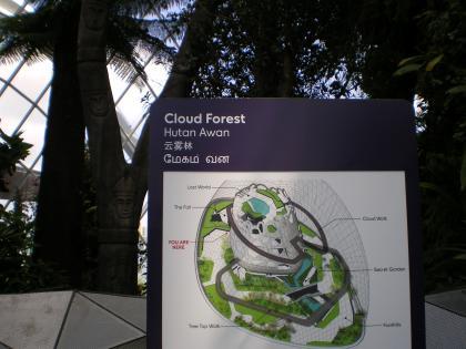 シンガポール2013.1クラウドフォレストマップ2