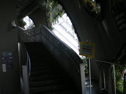 シンガポール2013.1クラウドフォレストシークレットガーデンへの階段