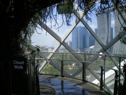 シンガポール2013.1クラウドフォレストクラウドウォーク入口