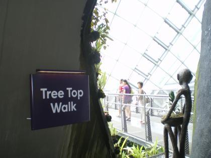 シンガポール2013.1クラウドフォレストツリートップウォーク入口