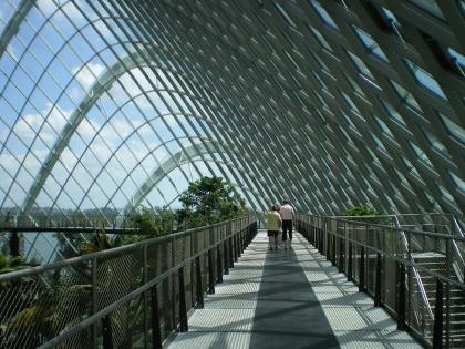 シンガポール2013.1クラウドフォレストツリートップウォーク2