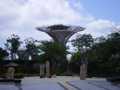 シンガポール2013.1ガーデンバイザベイのキャノピーからの眺め