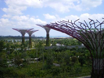 シンガポール2013.1スカイウォークからの眺め